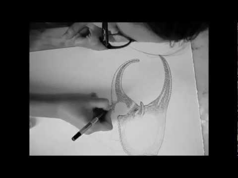 超絶技巧でカブトムシを描く女性アーティストのテクニックとは?