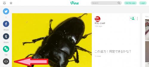 vineの動画共有ボタン