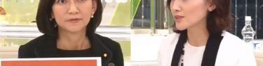 野党爆破!金子恵美「初鹿セクハラ議員っていましたよね?」#Metoo祭りの喪服議員がお通夜状態に