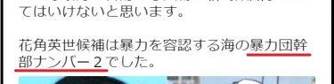 新潟県知事選で悪質な中傷!花角候補を「暴力団幹部ナンバー2だった」と投稿、虚偽事項公表で通報相次ぐ