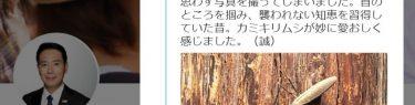 前原誠司さん「カミキリムシが妙に愛おしく感じた」←「誠司、それカミキリムシやない。カマキリや。」