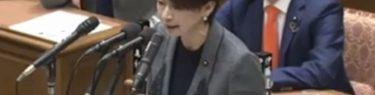 【衝撃の動画】山尾志桜里が国会質問中にぶっ壊れ叫ぶ!あまりの酷さに安倍首相「もうやめましょうよ」