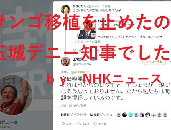 デニー知事にブーメラン!NHKが反撃開始「辺野古サンゴ移植、昨年8月以降は県が許可を出していない」
