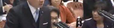 【国会】中野正志「最低でも県外と言ったのは何処の誰だ」元・民主「うるさい!」森裕子「関係ないよ!」