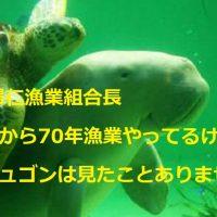 基地関係ない?元今帰仁漁協組合長「戦前から漁業やってるがジュゴン見たことない」ダイナマイト漁で激減