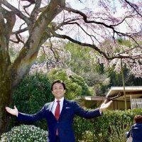 桜を見る会に参加した玉木雄一郎「午前の桜を見る会が遠い昔のよう」これなら悪夢の民主党政権を忘れるのも納得
