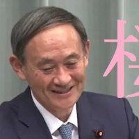 記者「桜という漢字について」菅官房長官「見たくも聞きたくもないw」次の質問へ「はい、桜じゃないでしょうねw」