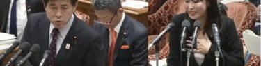 今井雅人さん森法務大臣の本を掲げ愛を叫ぶ「そのあなた!どこ行っちゃったんですか!」大臣「胸が痛かったです」