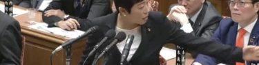 辻元清美さん質疑中に「石破さん頑張ってやー?」→1分後「総理、失礼だとお叱りを受け私も胸が痛かったです」なんか情緒不安定