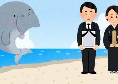 辺野古「一周忌ジュゴン追悼の会」を開催、主催者「辺野古の海を追われ死んだのでは」→死因はエイのトゲなんだけど