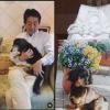 安倍前総理の愛犬ロイ「天に召されました」昭恵夫人が報告、ステイホーム「うちで踊ろう」では野党から中傷のネタに