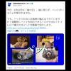 竹島の日を無視?内閣府広報「2月22日は猫の日」投稿に批判殺到!多くの人が勘違いしている竹島の日の扱いと政府広報